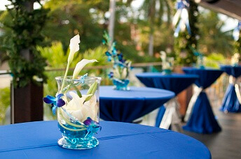 Blue Cilantro Deck